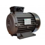 Электродвигатель RAVEL 11095A H112 HP 8.5 4P MA AC KW 6,3 4P