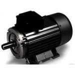 Электродвигатель Electrics Motors Europe 15,0 кВт, 3 фазы 1450 об/мин T160 H63A2078001E0
